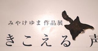 yuma49.jpg